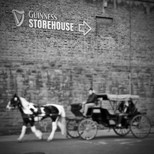 Horse Carriage at the Guinness Storehouse. 2016.