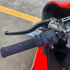 Ducati 1199 Superleggera -  (14)