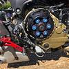 Ducati Monster Custom -  (5)