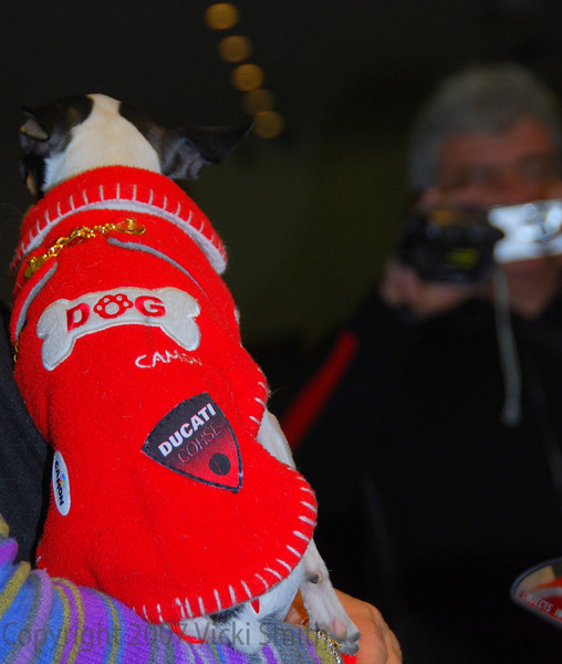 Ducati fever was at a high pitch. Even the Cucciolo was having his own photo shoot