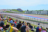 Not everybody prefers the grandstands. With grassy views like this it's easy to see why