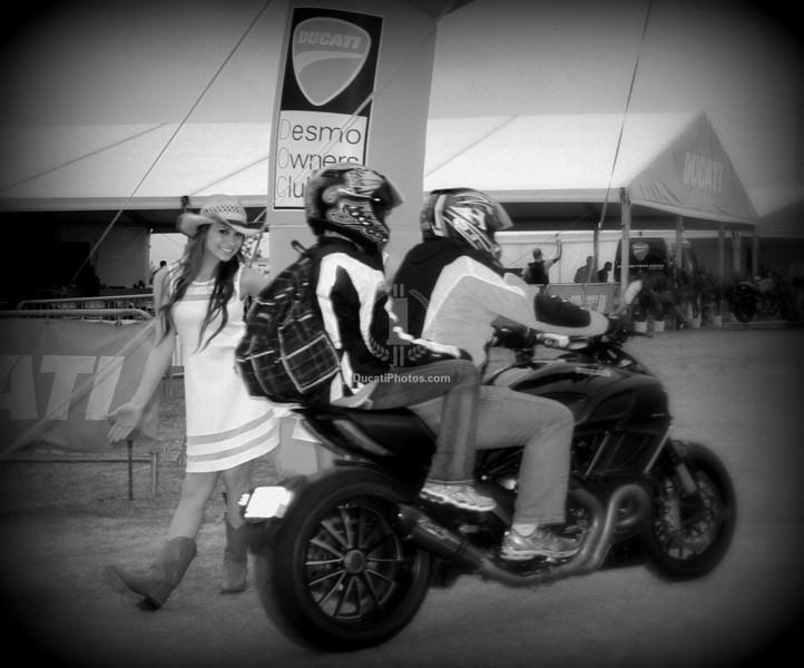 Welcome to Ducati Island!