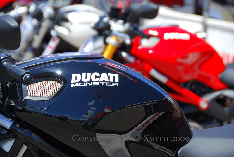 Literally, the weather is perfect but hot and the crowds are heading for the Island which has literally become an oasis, with owner hospitality, shade, food and cold water waiting for anyone with a Ducati registration and a matching photo ID