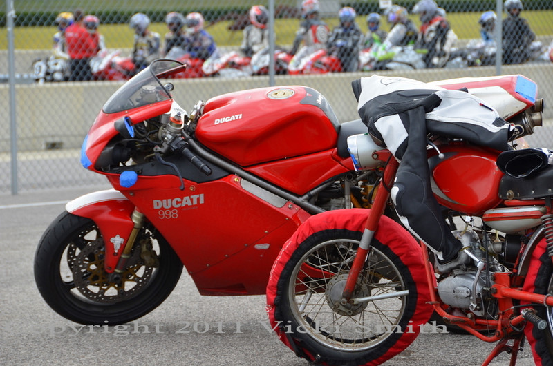 Quite the strange assortment of Ducati's