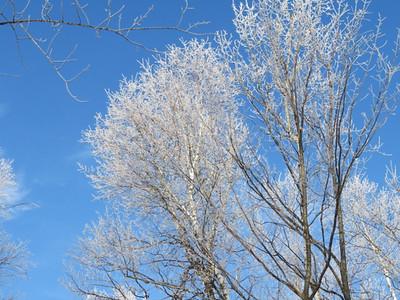 Duluth East Invite/Snowflake '18