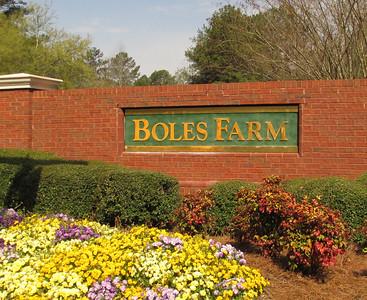 Boles Farm Duluth GA