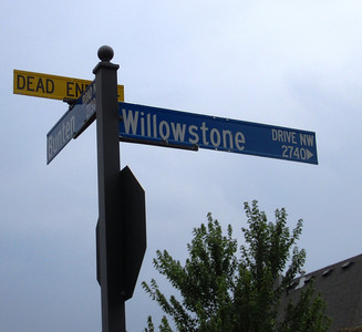 Willowstone At Duluth Georgia Gated Community (5)