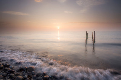 Morning Light -IMG_9739