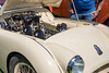 YSJ 361 Triumph TR2