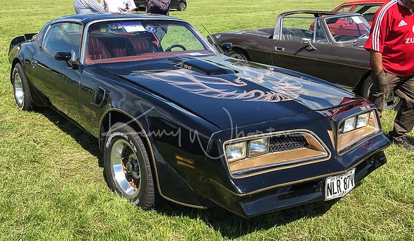 NLR 87V Pontiac Trans-Am (1978)