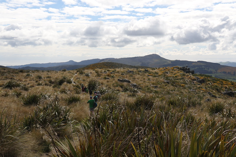 Complete Dunedin Northern Skyline Traverse - November 13, 2016