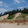 Lake Michigan shoreline dunes, Saugatuck Dunes State Park, Michigan.