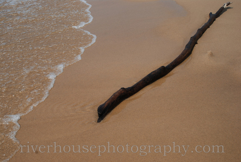 Waves and driftwood on the shore of Lake Michigan.
