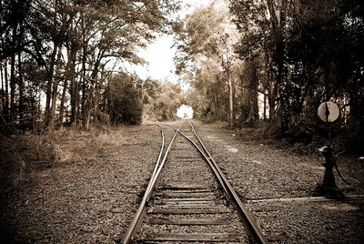 Train Track Photo Shoot