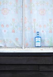 blue bottle dry gin