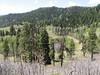 20100523 Pinkerton Flagstaff Trail Hike near Durango08, Mitchell Lakes