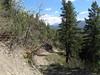 20100523 Pinkerton Flagstaff Trail Hike near Durango01