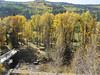 20101002a San Juan Highway, south of Rico, Colorado
