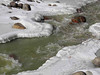 81 The Animas River a frozen wonderland