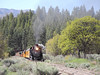 52 Iron Horse Race Train Engine 481