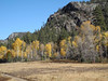 476 Still some colors in the Animas River Canyon