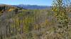 50 View to the La Plata Mountains