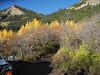 31 Gould Creek Trailhead