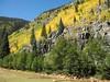 50 Nearing Silverton, the Animas River