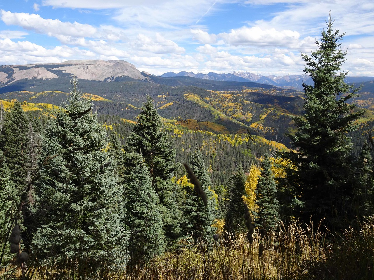 95 View to the east from the Colorado Trail near Hotel Draw