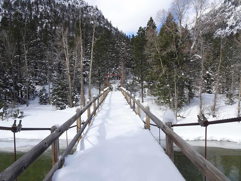 43 Footbridge at Cascade Canyon