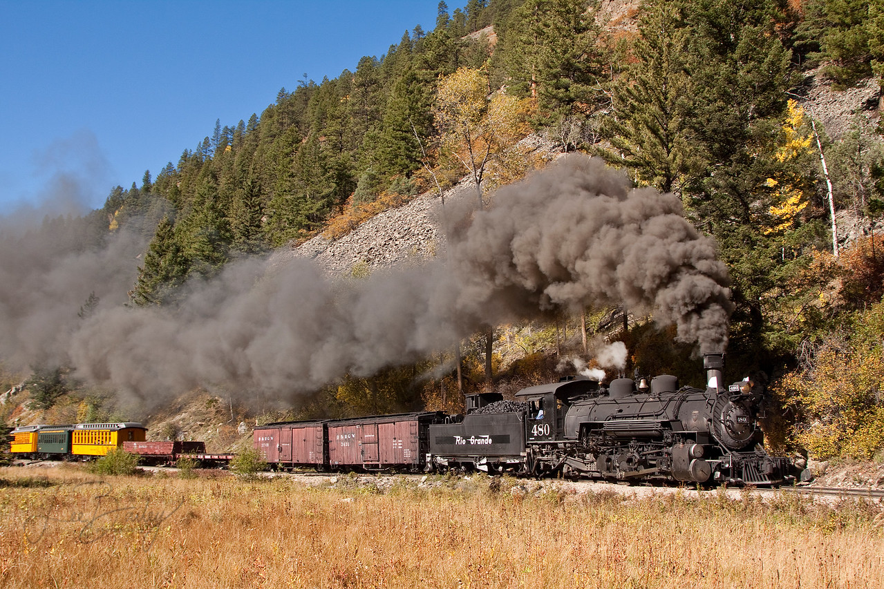 Steaming through the Meadow