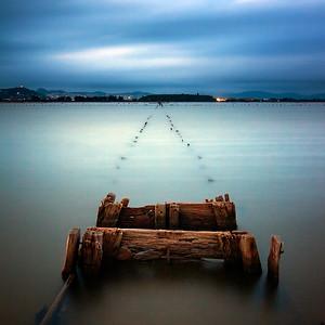 Floodsteps