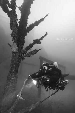 underwater forrest dutch springs