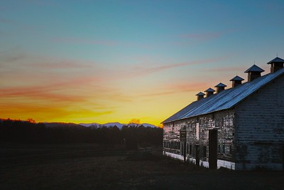 Paining the barn