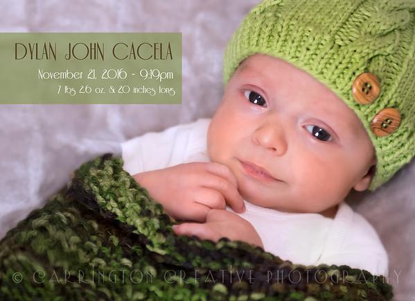 Dylan's Newborn Photo Shoot