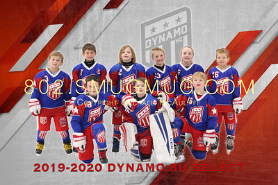 Dynamo 8U Select Yearbook Photos