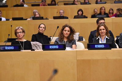 For Israel Mission to the UN use only. Photo: Shahar Azran