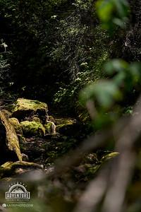 www.kaoriphoto.com
