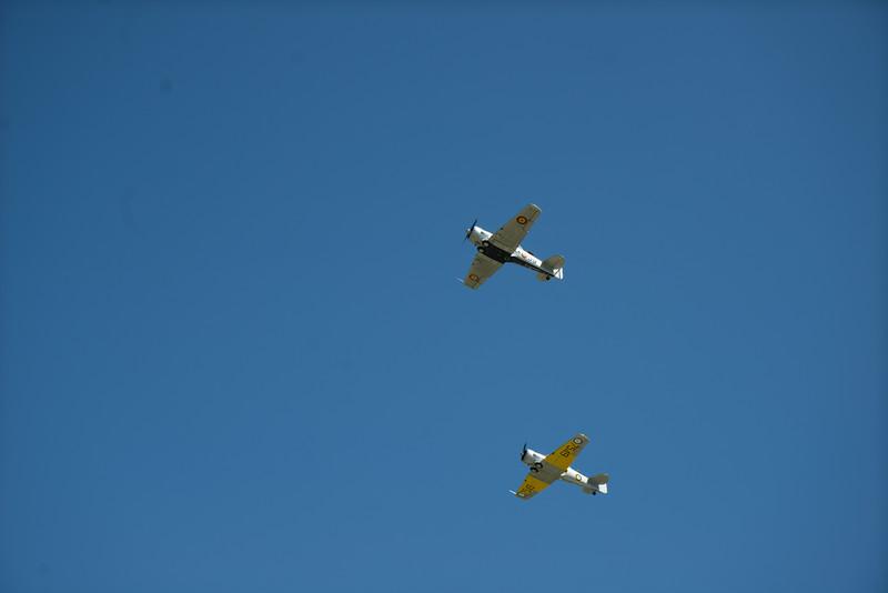 EAA-3606