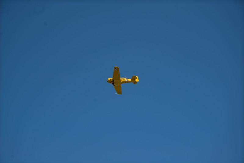 EAA-3607