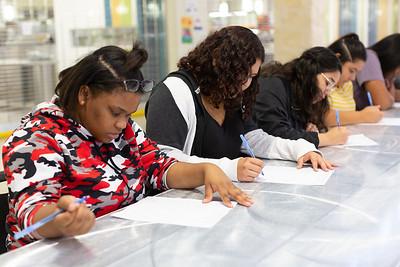 Kellogg Grant Project Schools_0018