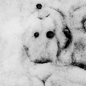 Snowman, March 2020