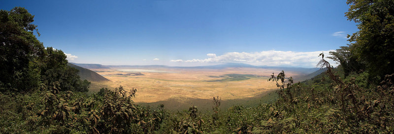 Ngorongoro Crater Crater Panoramic
