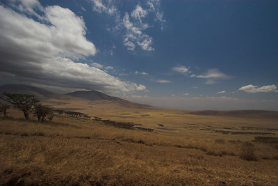 Ngorongoro Crater Ngorongoro Highlands