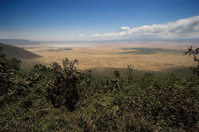 Ngorongoro Crater Crater Viewpoint