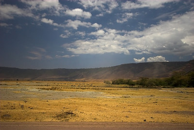 Ngorongoro Crater Crater Floor