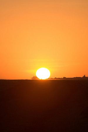 Masai Mara NR Sunrise