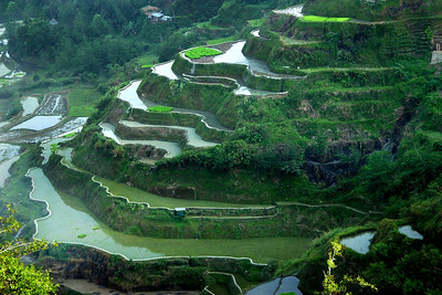 RICE TERRACES - NORTHERN LUZON