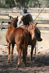 Day 2 colt starting 021