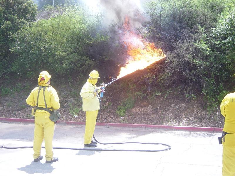 Terra torch prescribed burn